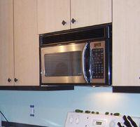 Microwave hood